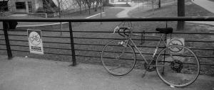 anna bike